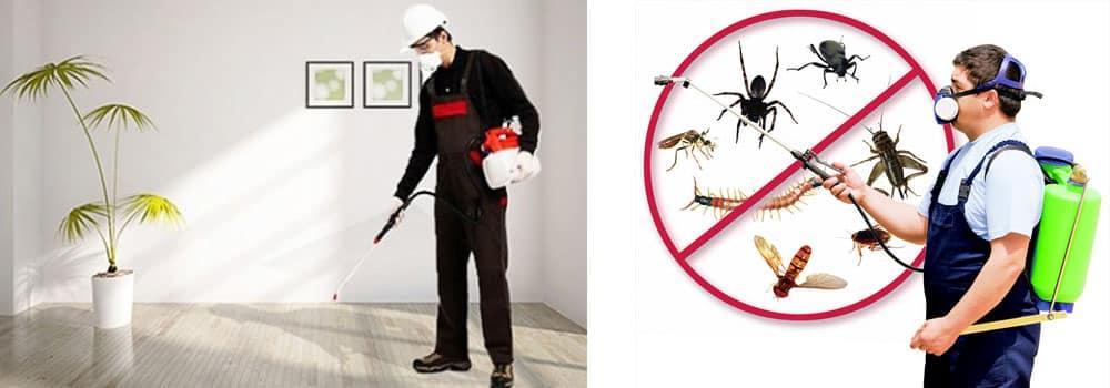 مكافحة حشرات 0545718458