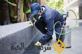 شركة رش مبيدات بالرياض *-*-