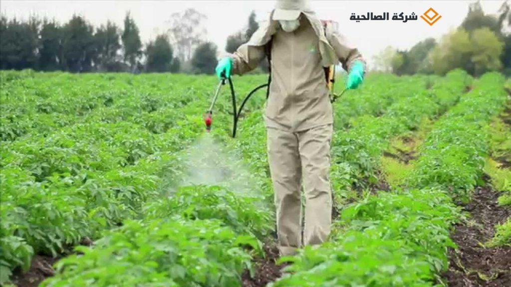 شركة رش مبيدات بالرياض .