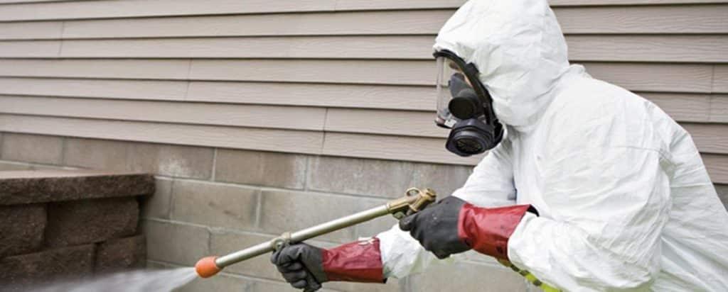 مكافحة حشرات ورش مبيدات