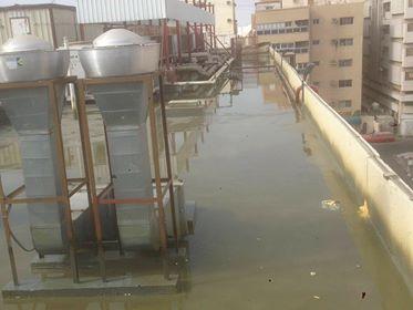 العوازل المائية والحرارية