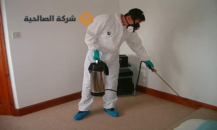 مكافحة حشرات بالرياض ورش مبيدات