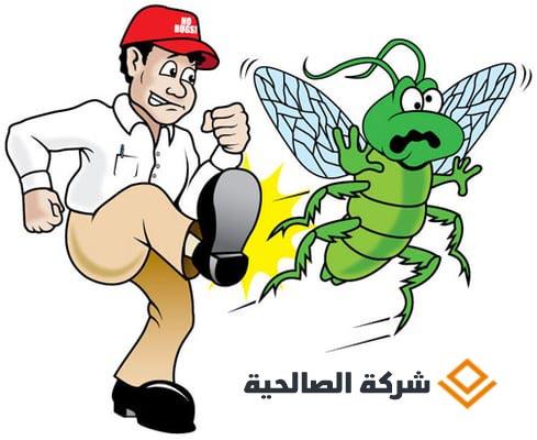 أسس مكافحة الحشرات بالرياض ..
