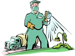 أسس مكافحة الحشرات بالرياض