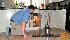 افضل انواع المبيدات الحشرية المنزلية