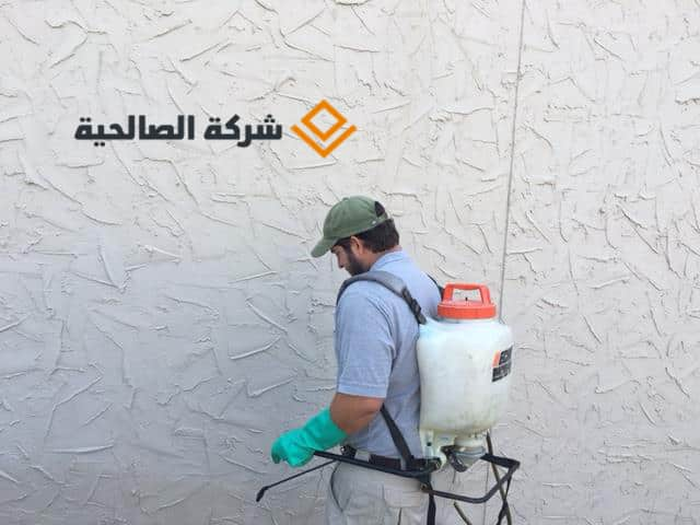 شركة مكافحة حشرات بالرياض -**-