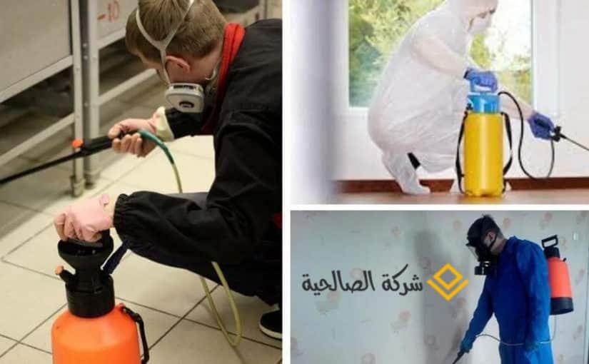شركة مكافحة حشرات بالرياض (-*)